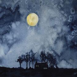Midnigh Moonlight