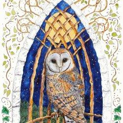 Merlin's Owl & the Moon