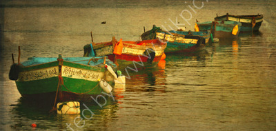 Moroccan fishing boats