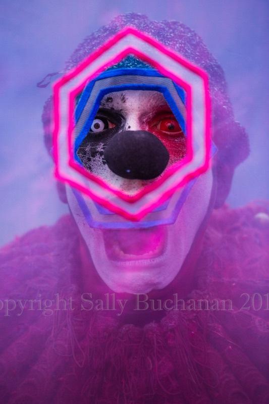 The Inevitable Installation Sally Buchanan 7