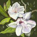 Pale Magnolia