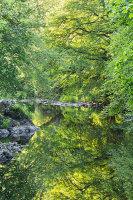 Conwy summer