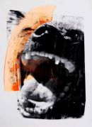HYENA SCREAM BY JAMES BAKER (SOLD)