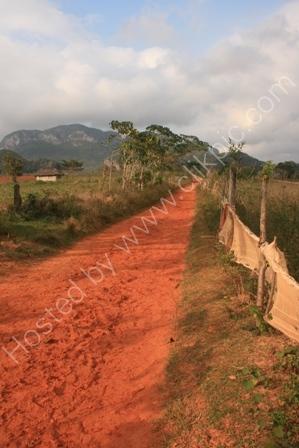 Farm Track near Vinales