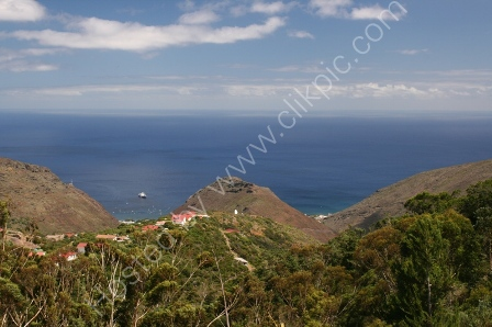 From Alarm Forest, St Helena