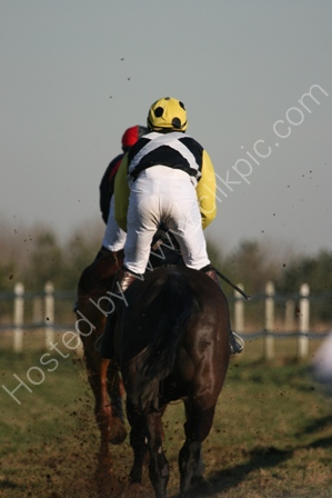Jockey in a Point to Point