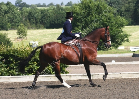 At the National Side Saddle Association Championships