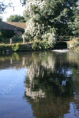 Reflections in Mill Pool