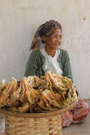 Woman Selling Herbal Medicine