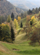 Alpine meadows in autumn