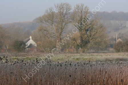 Water Meadows with Frost