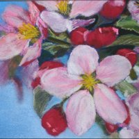 Apple blossom - pastels