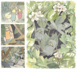Images from 'Fairy House' I