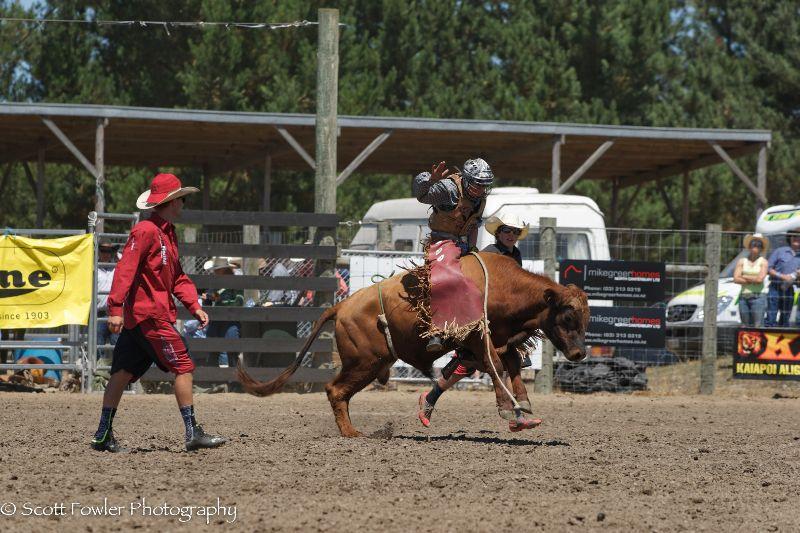 Mandeville rodeo 2015-11