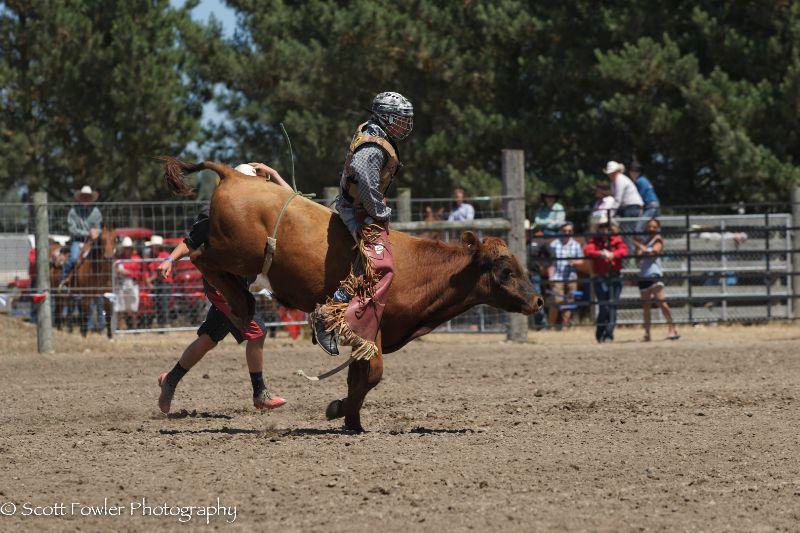 Mandeville rodeo 2015-13