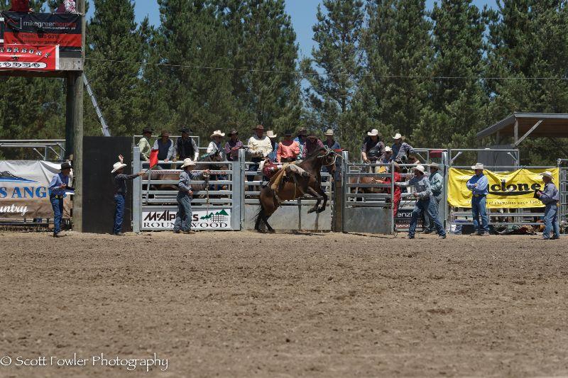 Mandeville rodeo 2015-19