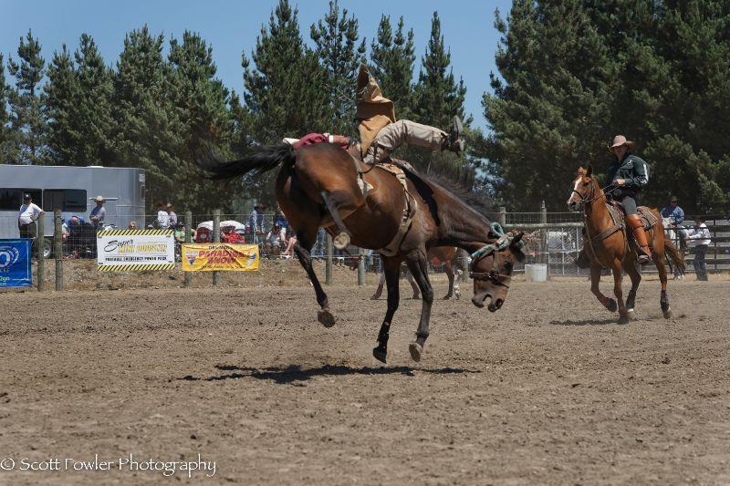 Mandeville rodeo 2015-20