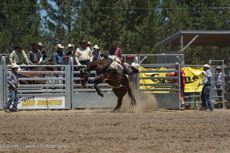 Mandeville rodeo 2015-21