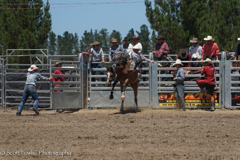 Mandeville rodeo 2015-22