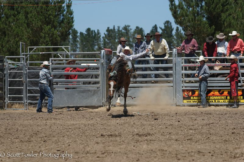 Mandeville rodeo 2015-23