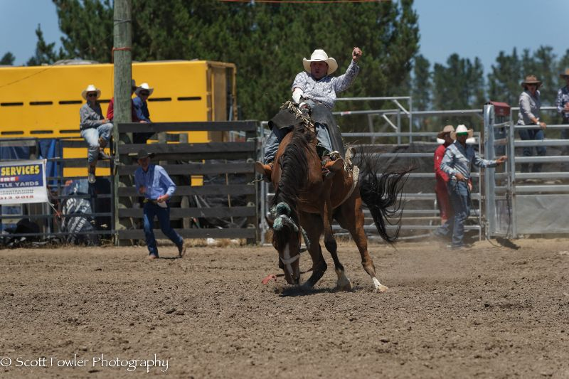 Mandeville rodeo 2015-25