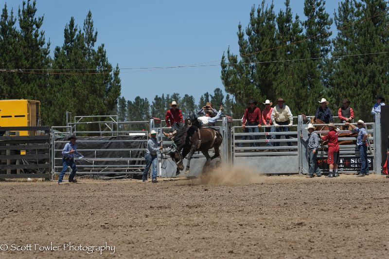 Mandeville rodeo 2015-29