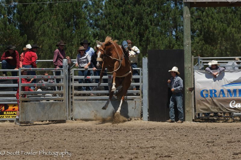Mandeville rodeo 2015-33