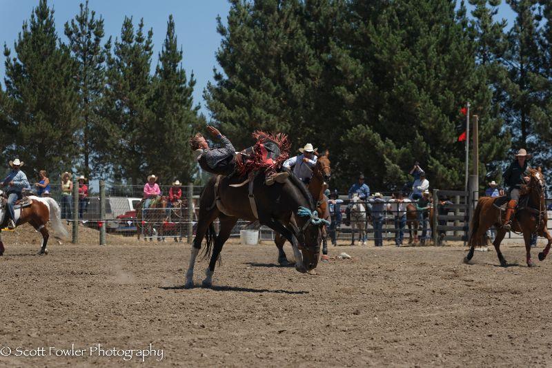 Mandeville rodeo 2015-42