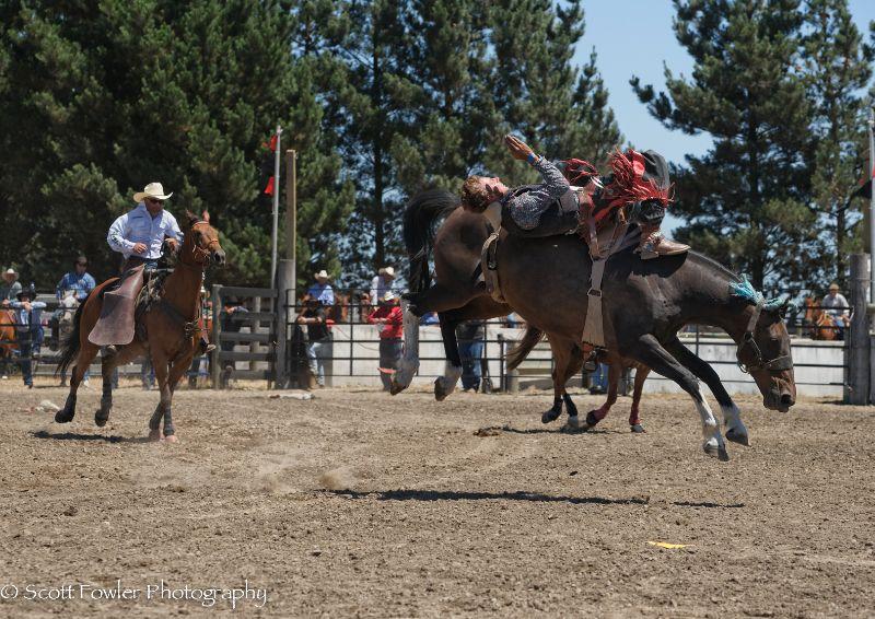 Mandeville rodeo 2015-43