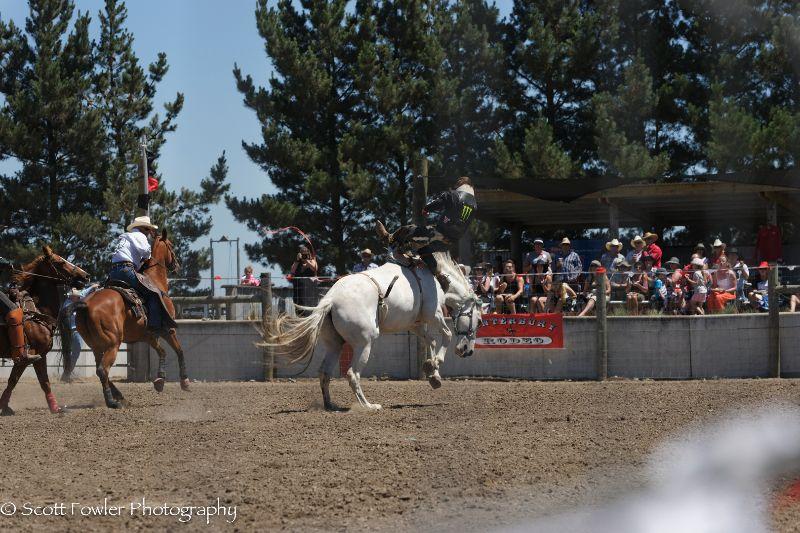 Mandeville rodeo 2015-44