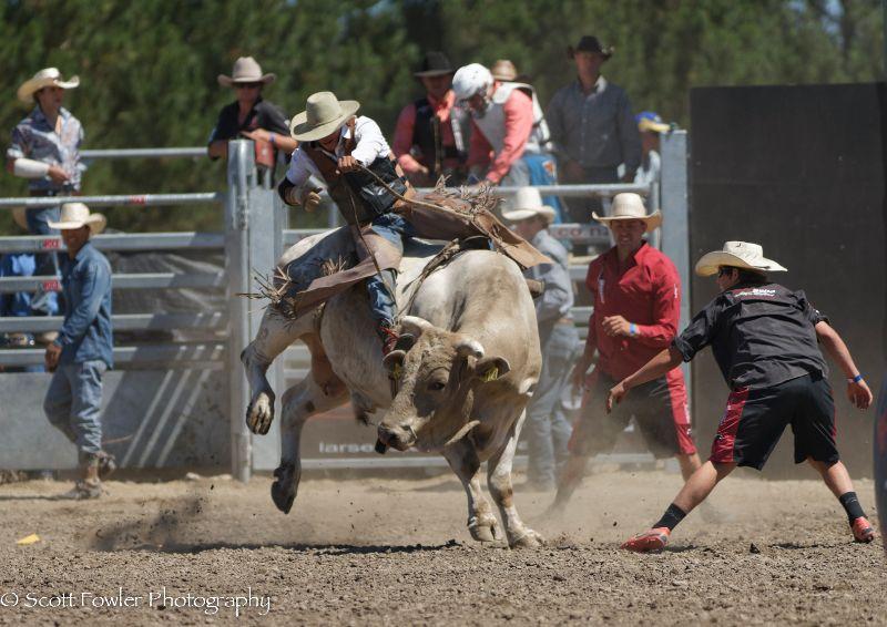 Mandeville rodeo 2015-69