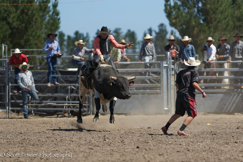 Mandeville rodeo 2015-78
