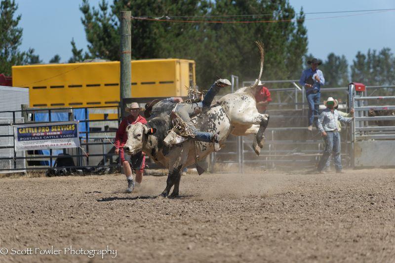 Mandeville rodeo 2015-81