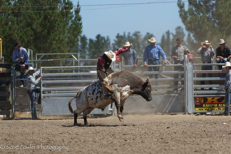 Mandeville rodeo 2015-85
