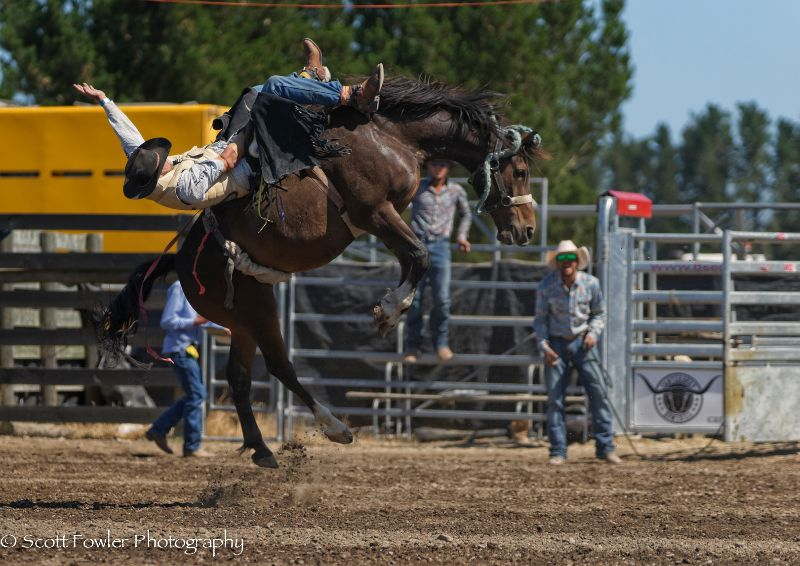 Mandeville rodeo 2015-89