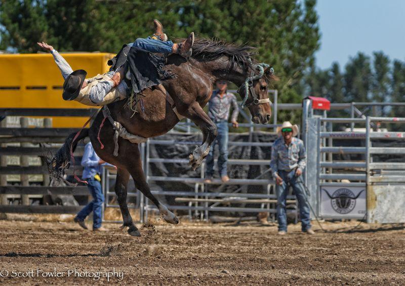 Mandeville rodeo 2015-90
