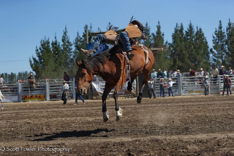 Mandeville rodeo 2015-93
