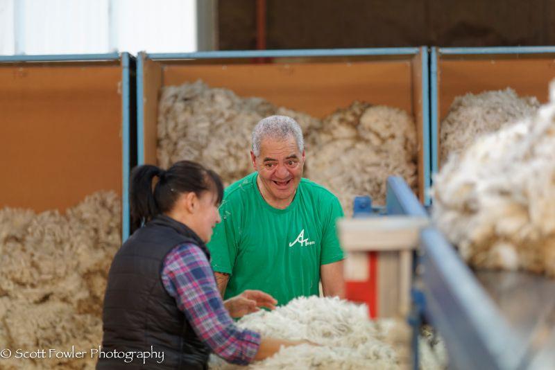 October Shearing workshop 2016-3