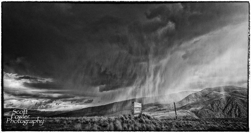 Storm Dunny web