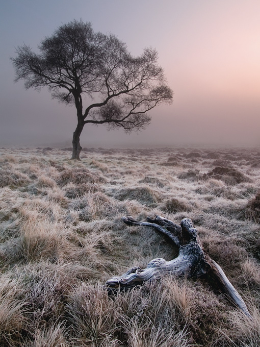 Frost on Hathersage Moor