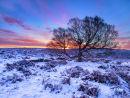 Lawrence field sunrise