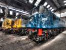 Diesel Locomotives