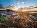 Owler sunrise