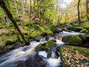 Burbage Brook at Padley Gorge
