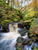 Autumn colour in Padley woods