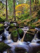 Wyming Brook in Autumn