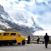1017-Athabasca Glacier