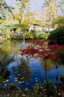 Autumn in the Dingle, Shrewsbury
