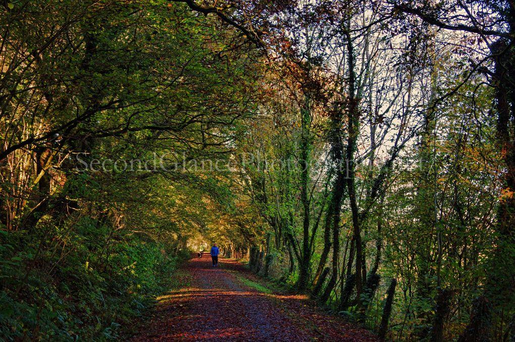 Autumn 1 (3)