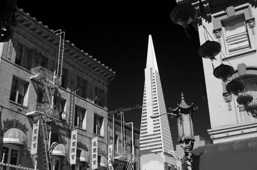 China Town San Francisco - Mono
